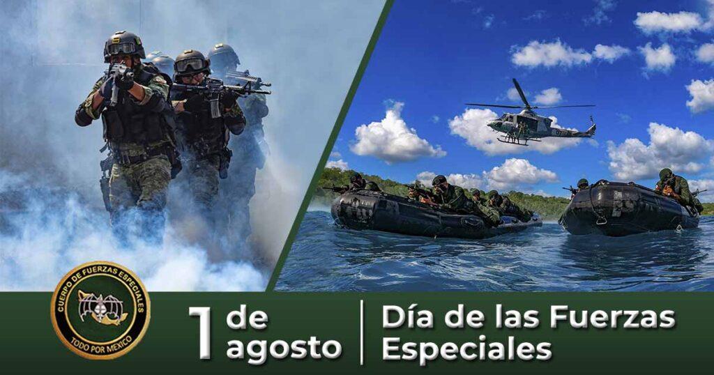 Militarización en México (II)